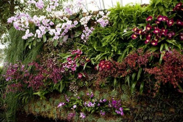 Orchid Show Vertical Gardens
