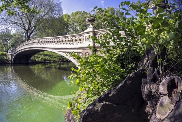 Puente Bow de Central Park de Nueva York