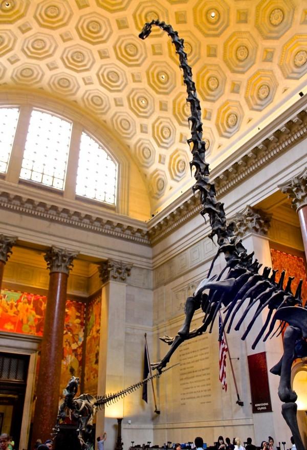 Museo de Dinosaurios de Historia Natural de Nueva York