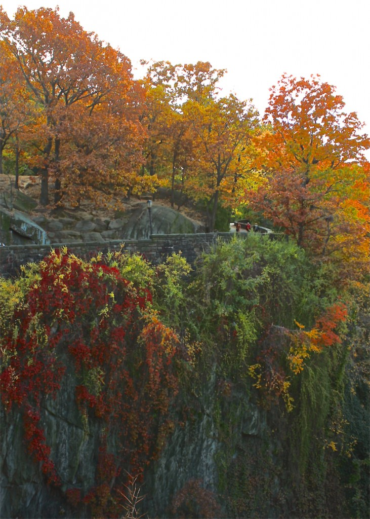 Autumn in Fort Tryon Park, NYC