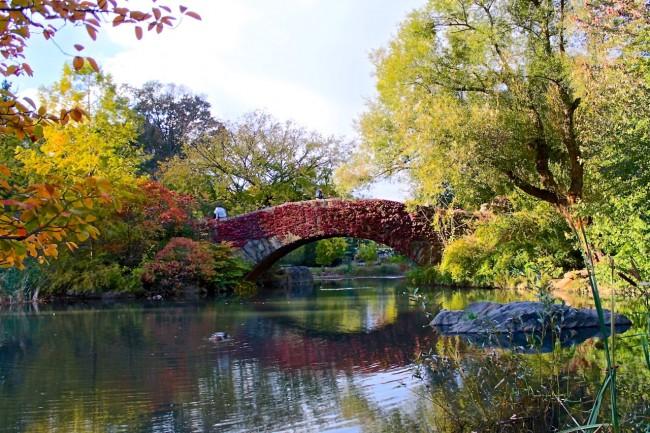 Central Park's Gapstow Bridge in autumn, NYC
