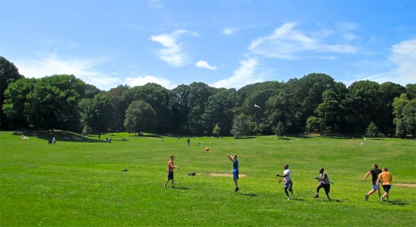 Long Meadow, Prospect Park, NYC