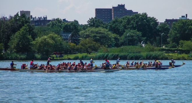 Dragon Boat Race, NYC