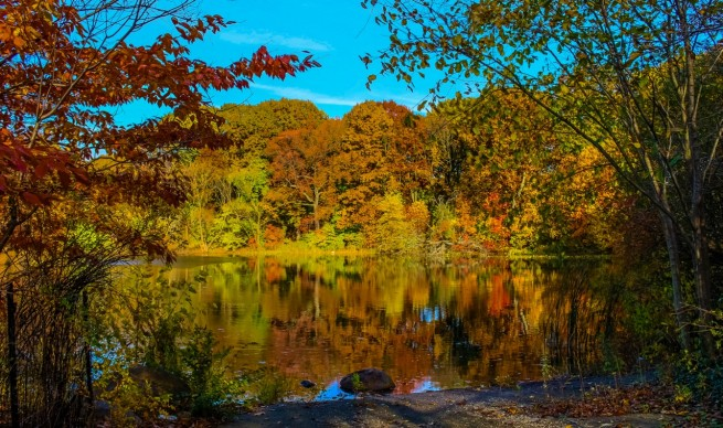 Prospect Park, otoño
