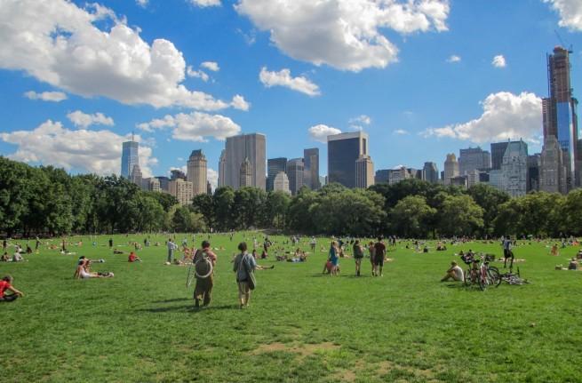 Prado de ovejas de Central Park