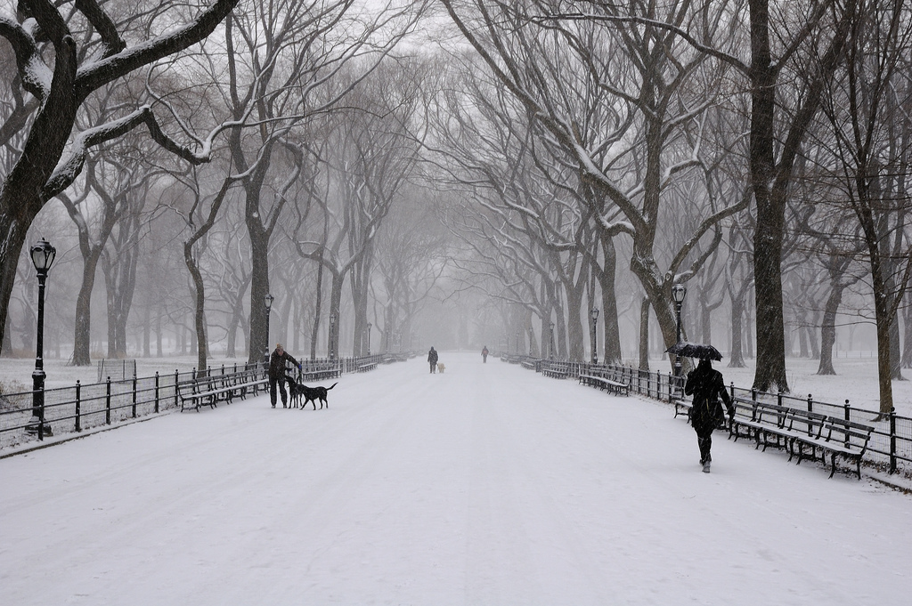 The most romantic things to do in new york winter edition for New york winter things to do