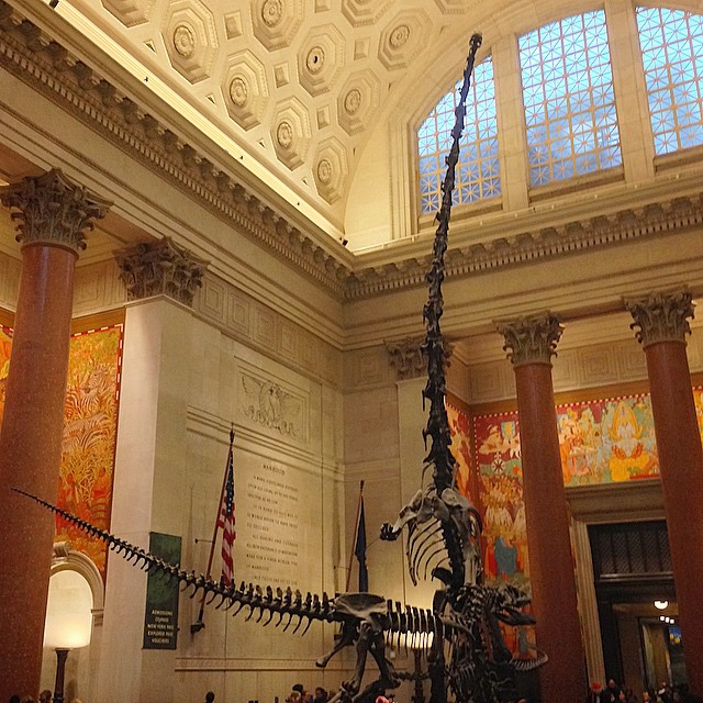 Jurassic Manhattan: dinosaurs roam the lobby of the Museum of Natural History.