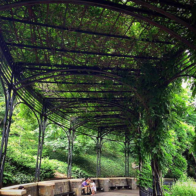 The lush wisteria pergola in Central Park's Conservatory Garden, a wonderful place for relaxation and contemplation. Have you explored this oft-overlooked NYC treasure?