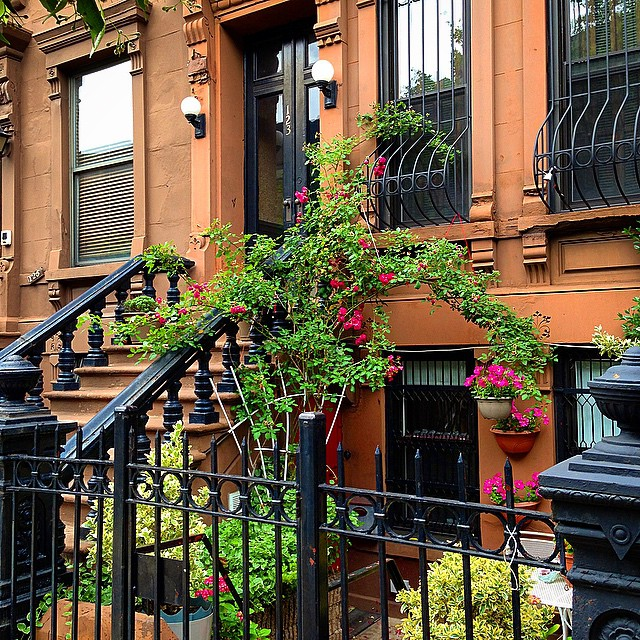 Just one of Harlem's charming brownstones. Explore this historic neighborhood to celebrate Black History Month (or anytime, for that matter).